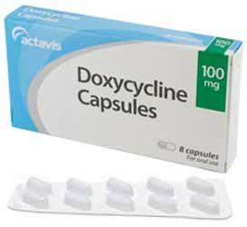 fetdoxycycline.jpg